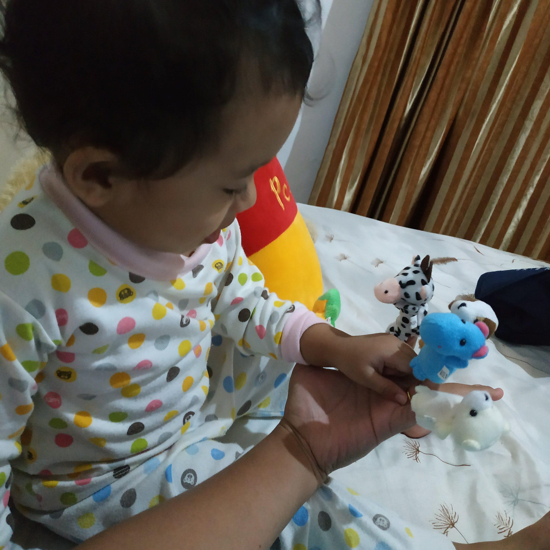 Boneka jari