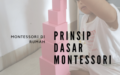 Montessori di Rumah: Prinsip Dasar Montessori